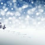 christmas-3864552_1920 2